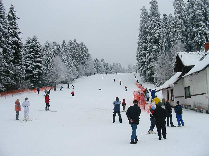 Ski staza na kraljevackoj strani Goča