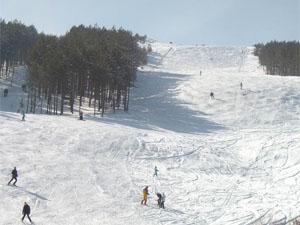 Ski staza na Goču