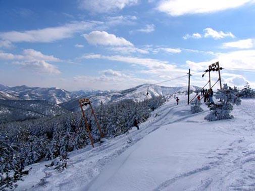 Zicara ski staza na Goču - banjska strana