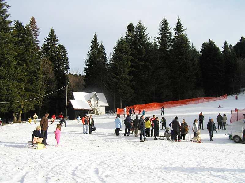 Ski staza na Goču - kraljevacka strana