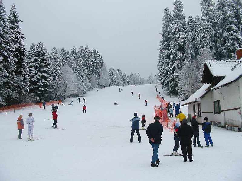 Pogled sa dna na ski stazu na Goču - kraljevacka strana